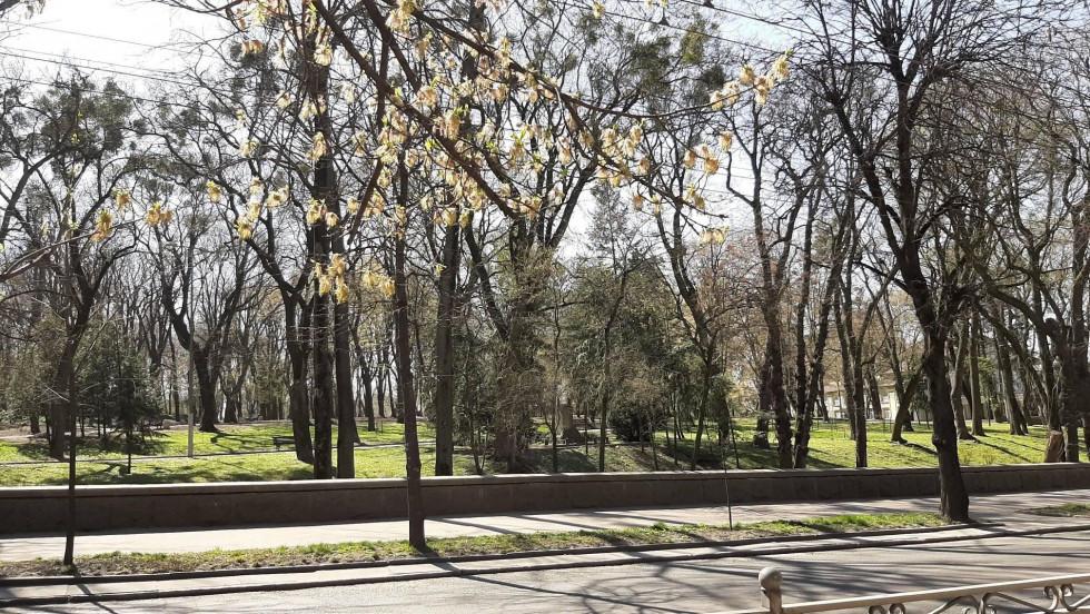 Міський парк імені Шевченка в тишині
