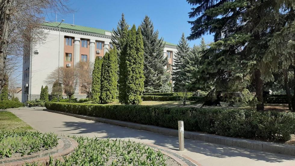 Будівля міської ради сховалася за затишною зеленню