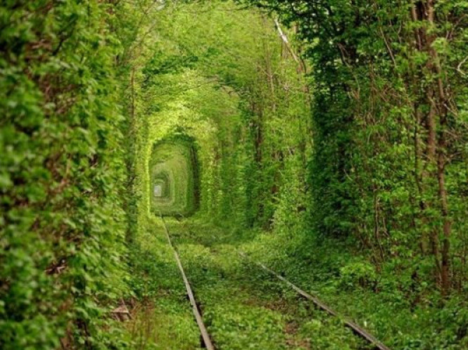 Тунель кохання в селищі Клевань